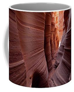 Zebra Slot Coffee Mug