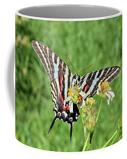 Zebra Swallowtail And Ladybug Coffee Mug