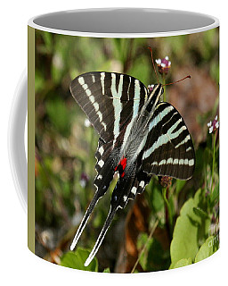 Zebra Swallowtail Butterfly Coffee Mug by Myrna Bradshaw