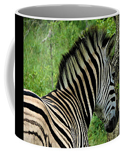Zebra Walks Coffee Mug