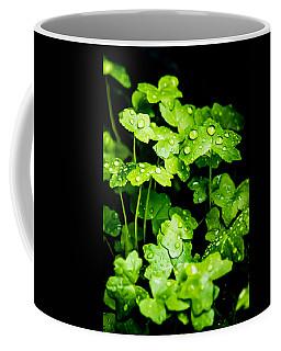 Zen Waterdrops Coffee Mug
