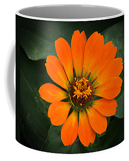 Zinnia 2a Coffee Mug