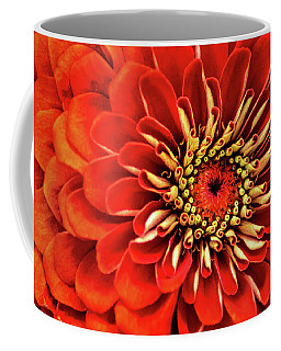 Zinnia-macro Coffee Mug
