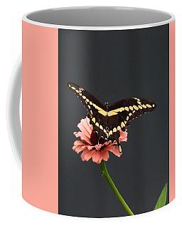 Zinnia With Butterfly 2708  Coffee Mug