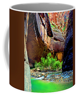 Zion Narrows #2 Coffee Mug