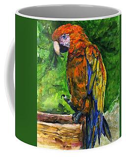 Zoo In St. Maarten Coffee Mug