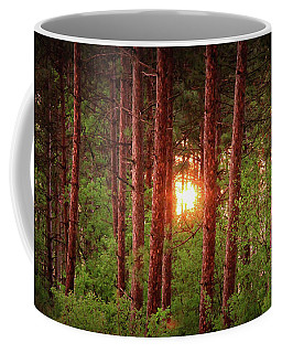 010 - Pine Sunset Coffee Mug