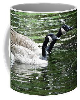 031619 Geese City Park New Orleans Coffee Mug