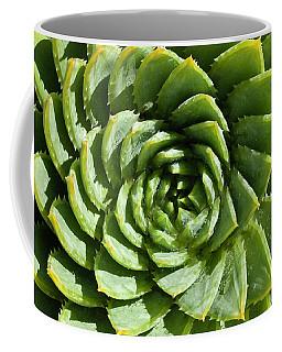Aloe_polyphylla_8536.psd Coffee Mug