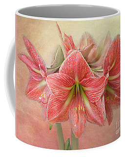 Amaryllis  'terra Cotta Star' Coffee Mug