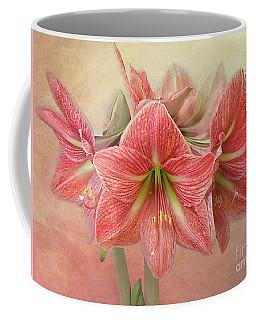 Amaryllis  'terra Cotta Star' Coffee Mug
