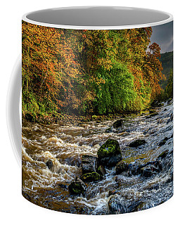 Autumn Rapids Coffee Mug