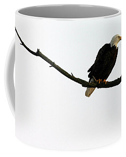 Bald Eagle 120501 Coffee Mug