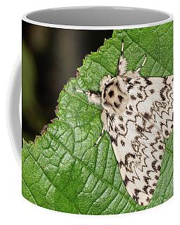 Black Arches Moth Coffee Mug