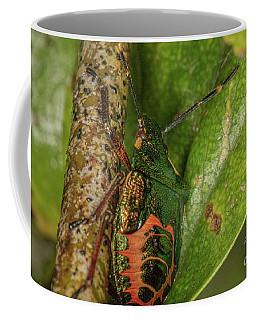 Bronze Shield Bug Coffee Mug