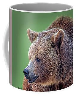 Brown Bear 5 Coffee Mug