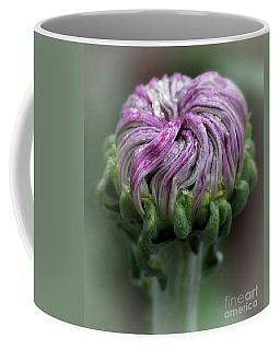 Chrysanthemum 'lili Gallon' Coffee Mug