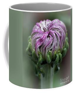 Coffee Mug featuring the photograph Chrysanthemum 'lili Gallon' by Ann Jacobson