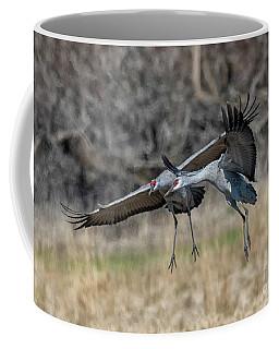 Collision Course Coffee Mug