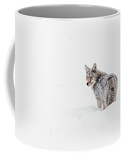 Coffee Mug featuring the photograph Coyote by Ronnie and Frances Howard
