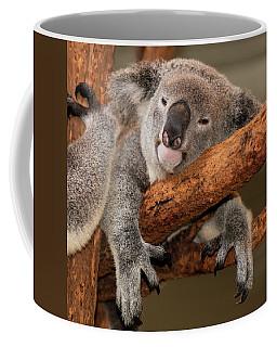 Cute Australian Koala Resting During The Day. Coffee Mug