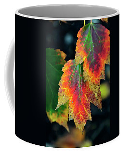 Coffee Mug featuring the photograph Fall Leaves 6072 by Jerry Sodorff