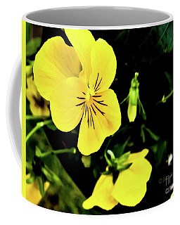 Flowers Hanging No. Hgf17 Coffee Mug