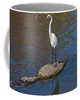 Great Egret Hitching A Ride On An Alligator Coffee Mug