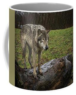 Hangin On The Log Coffee Mug