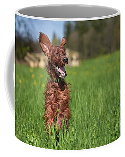 Happy Setter Coffee Mug