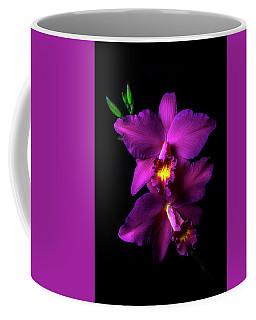 Magenta Cattleya Coffee Mug