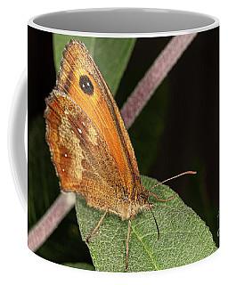 Meadow Brown Coffee Mug
