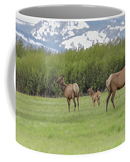 Coffee Mug featuring the photograph Momma And Newborn by Ronnie and Frances Howard