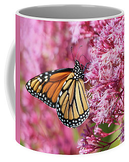Coffee Mug featuring the photograph Monarch Butterfly by Debbie Stahre