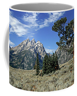 Coffee Mug featuring the photograph Old Patriarch Tree by Ronnie and Frances Howard