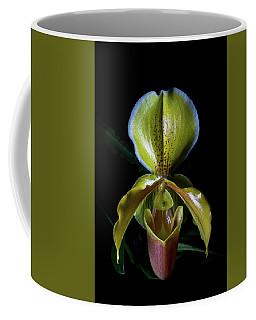 Paph Coffee Mug