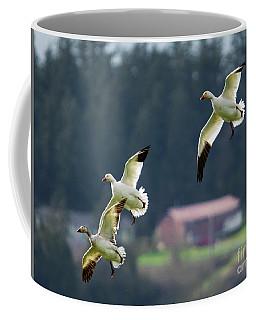 Pattern Of Three Coffee Mug