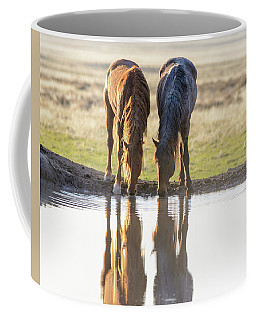 Coffee Mug featuring the photograph Reflection by Mary Hone