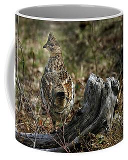 Coffee Mug featuring the photograph Ruffed Grouse 50701 by Rick Veldman