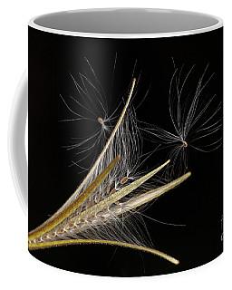 Seed Heads Coffee Mug