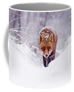 Snow Fox Series - The Fox On The Hill Coffee Mug