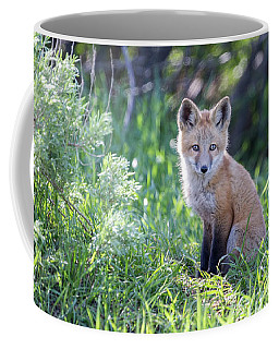 Soul Center Coffee Mug
