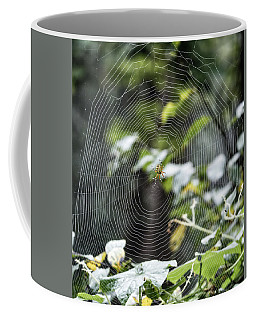 Spider At Work Coffee Mug