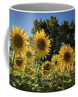 Sunlit Sunflowers Coffee Mug