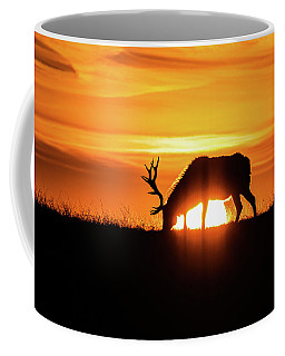 Sunrise Elk Coffee Mug