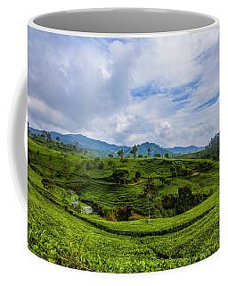 Nature Seekers Coffee Mugs