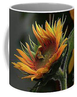 The Close Up Coffee Mug