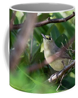 Thick-billed Vireo Coffee Mug