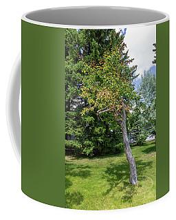Trees In The Garden Coffee Mug