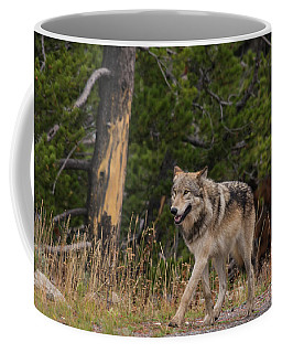 Coffee Mug featuring the photograph W1 by Joshua Able's Wildlife
